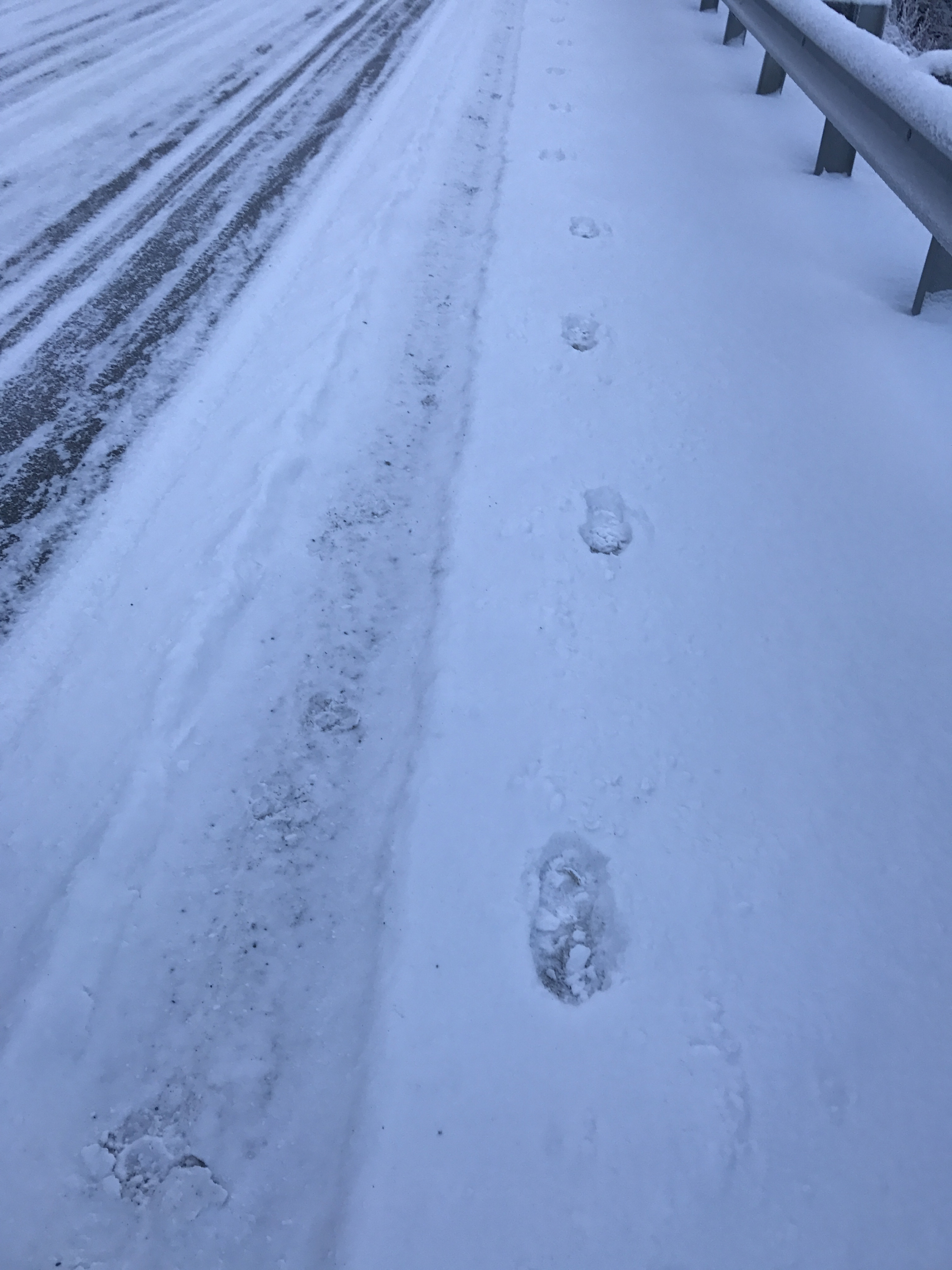 Snow Footsteps